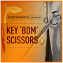 Key BDM Scissors