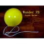 Wonder Floating Balloon